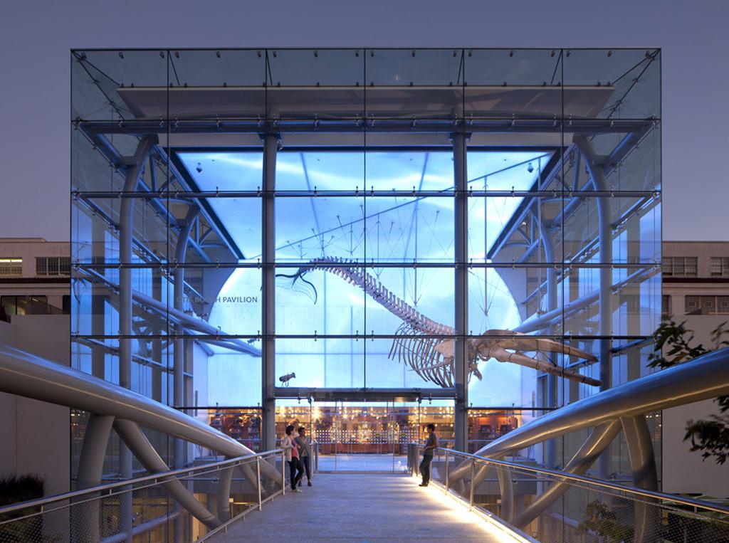 NATURAL HISTORY MUSEUM (2013) CA